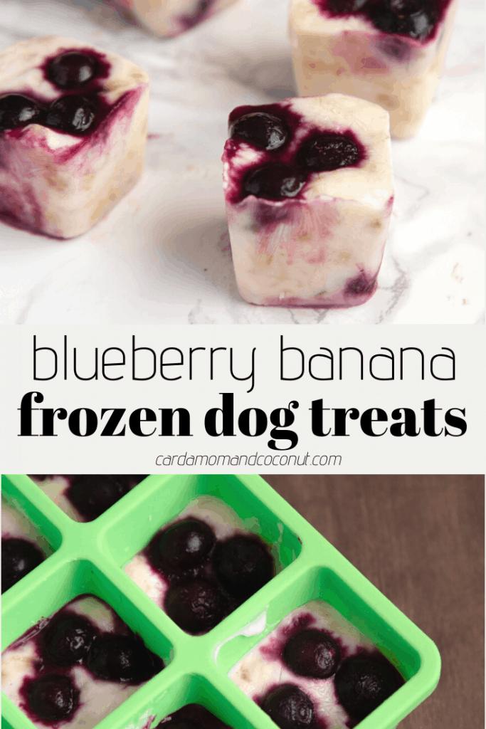 banana blueberry frozen dog treats pinterest image